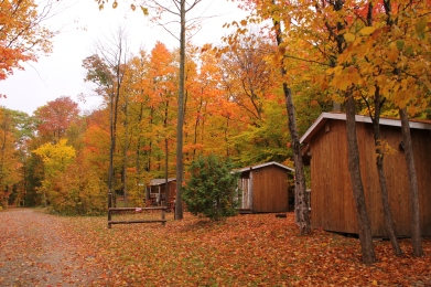 3 camping cabins in fall